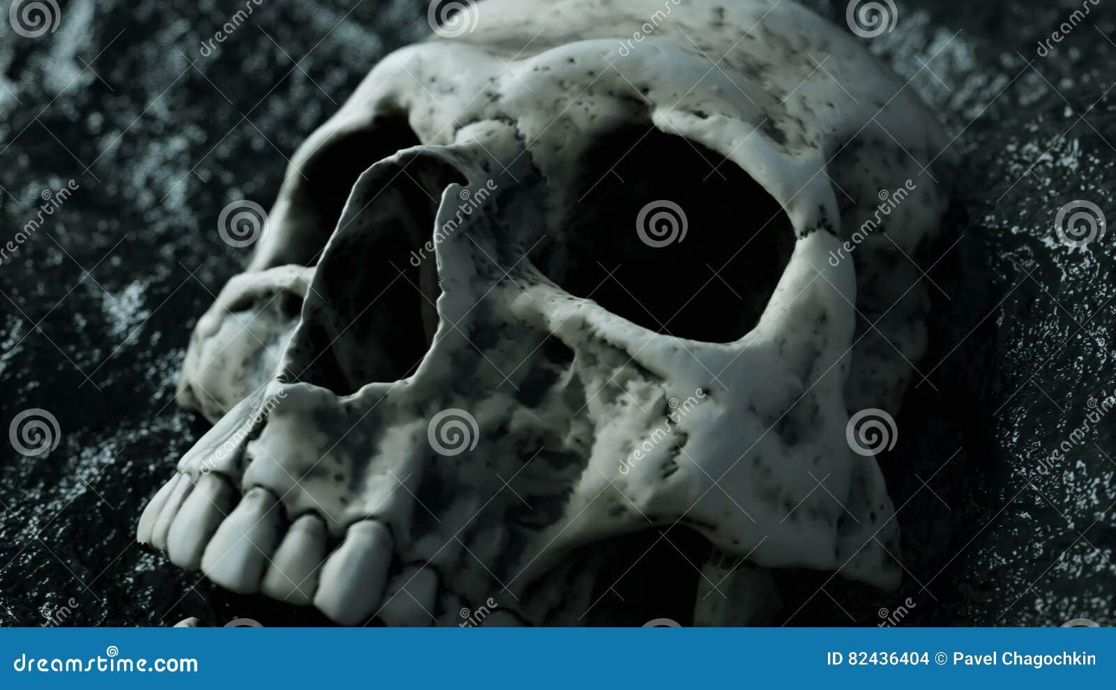 Cráneo Humano Antiguo Concepto De La Apocalipsis Animación Realista ...