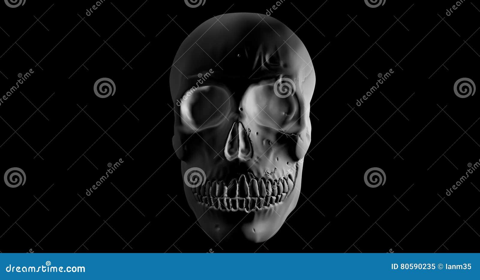 Cráneo O Cráneo Humano En La Rotación 360 Grados En Fondo Negro ...