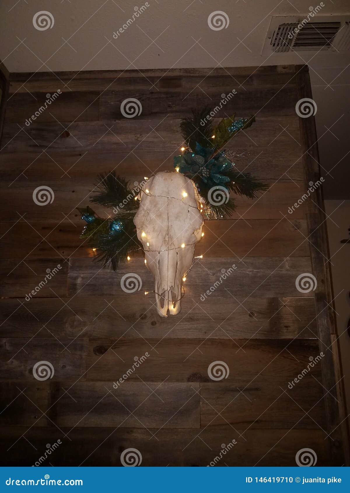 Cr?neo r?stico de la Navidad