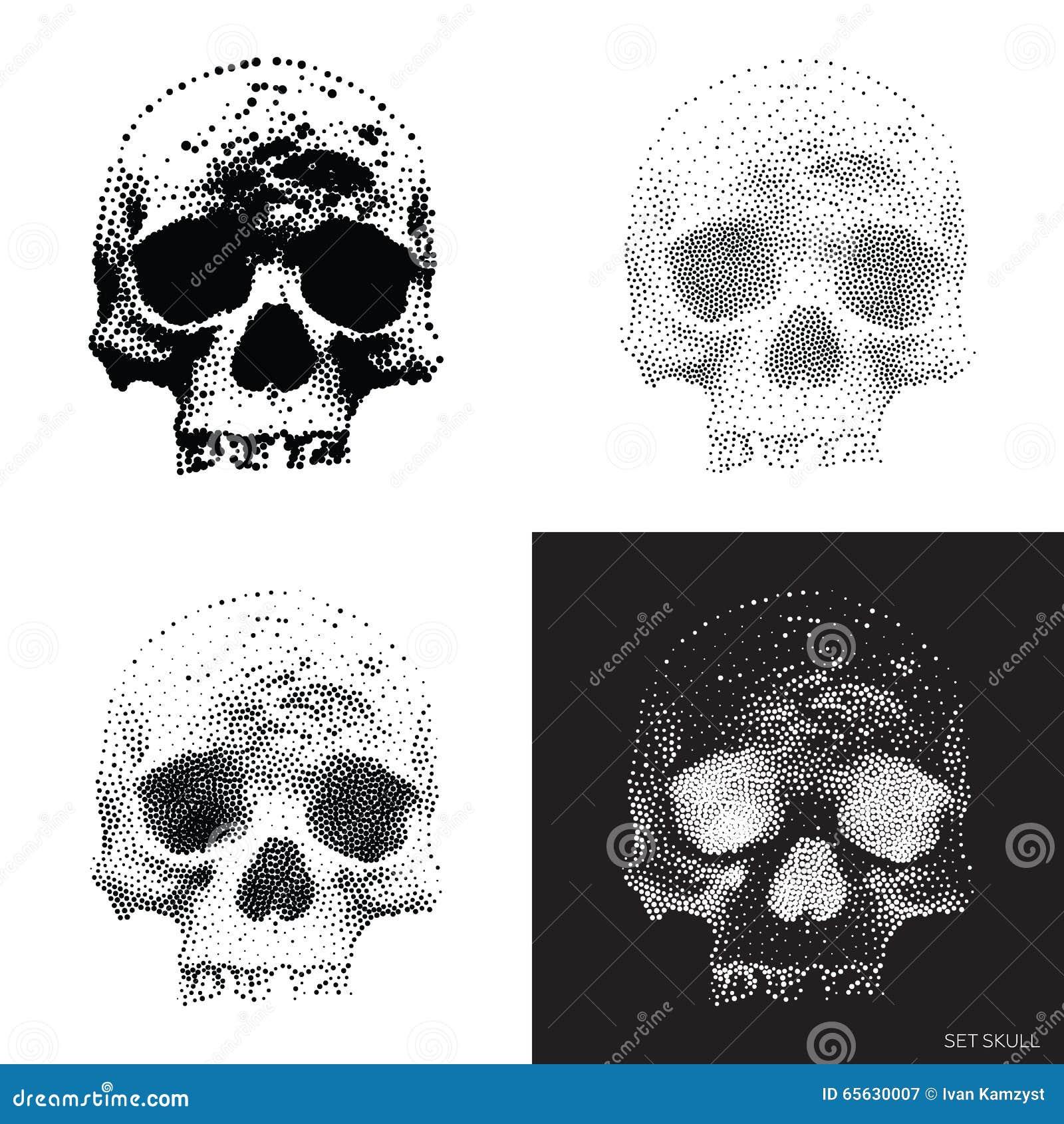 Crâne 01