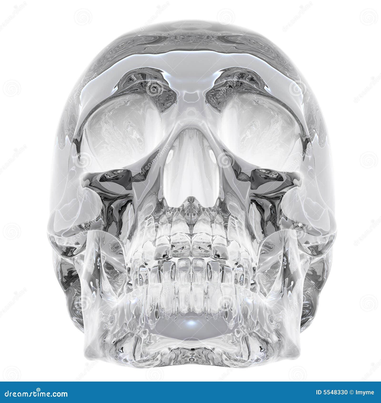 Crâne en cristal