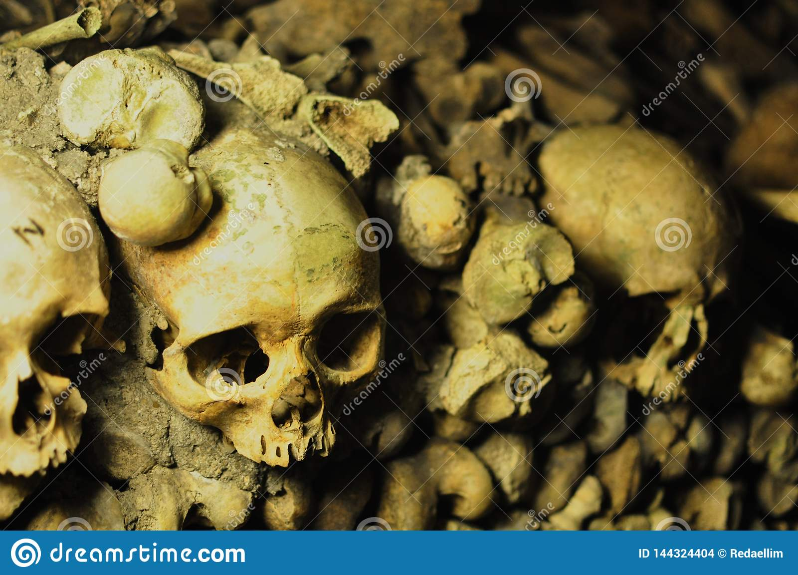 Crânes humains dans les catacombes de Paris, France