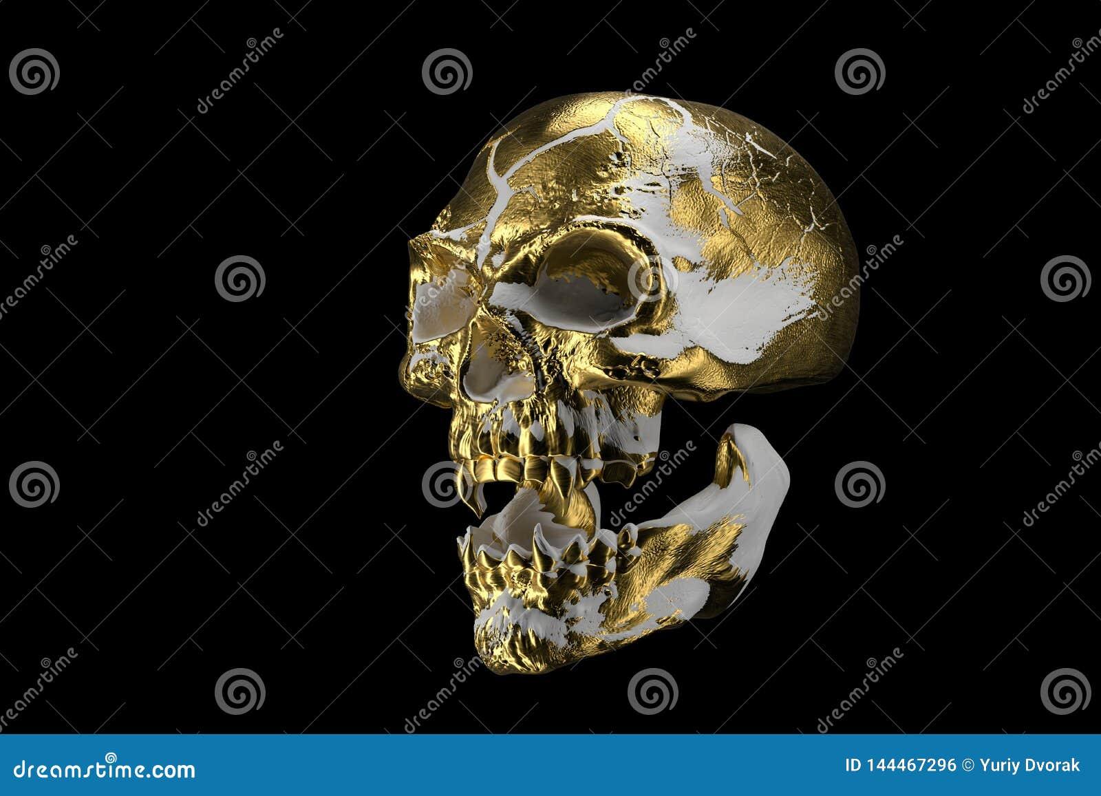 Crânio branco dourado isolado no fundo preto O crânio demoníaco de um vampiro Cara assustador do skilleton para Dia das Bruxas