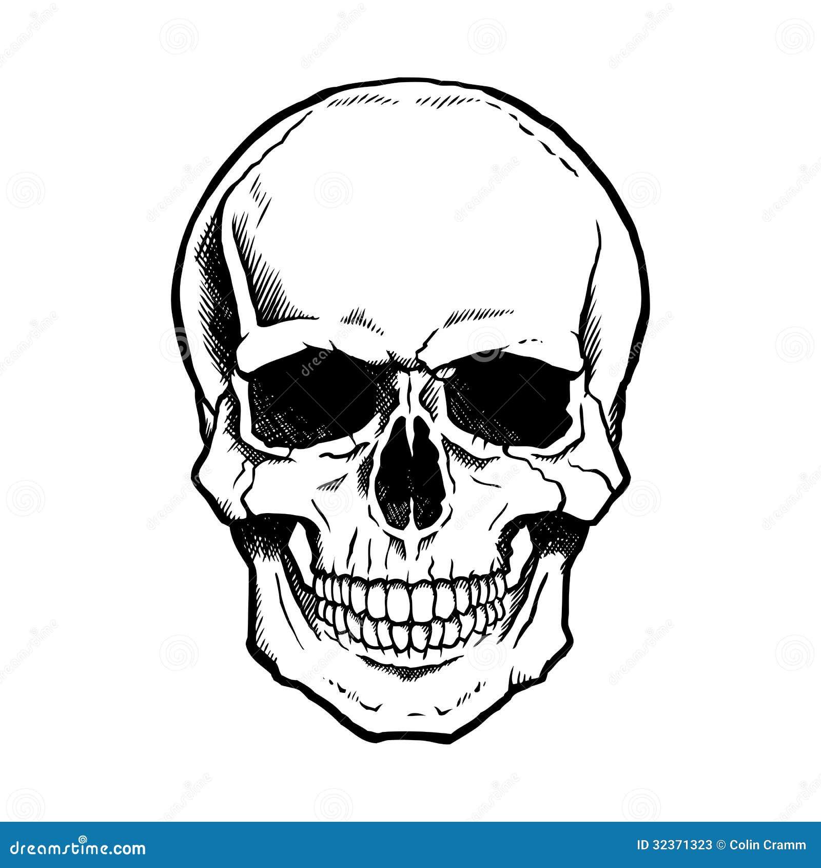 Cr 226 nio humano preto e branco com maxila fotos de stock imagem
