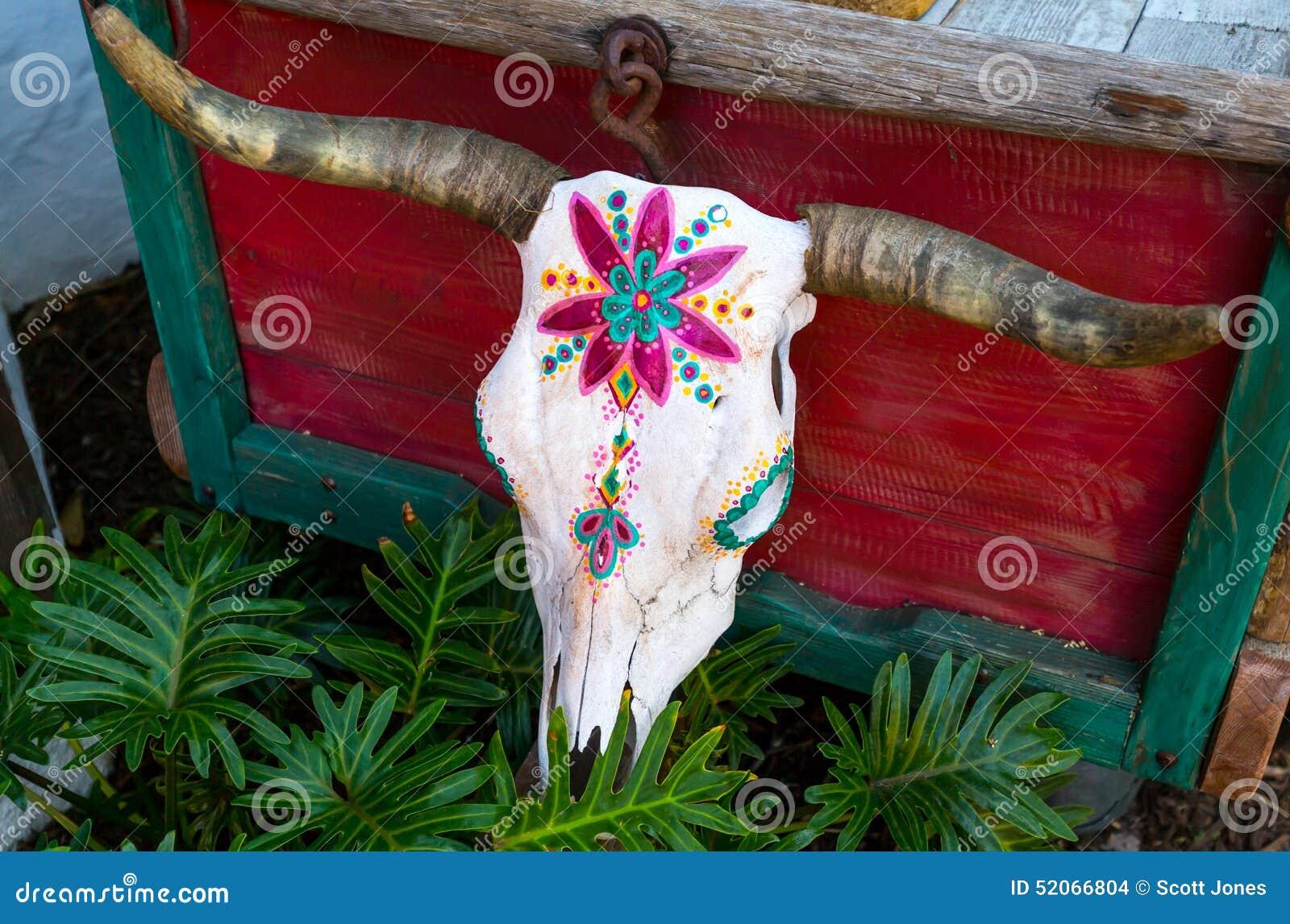Crânio pintado da vaca