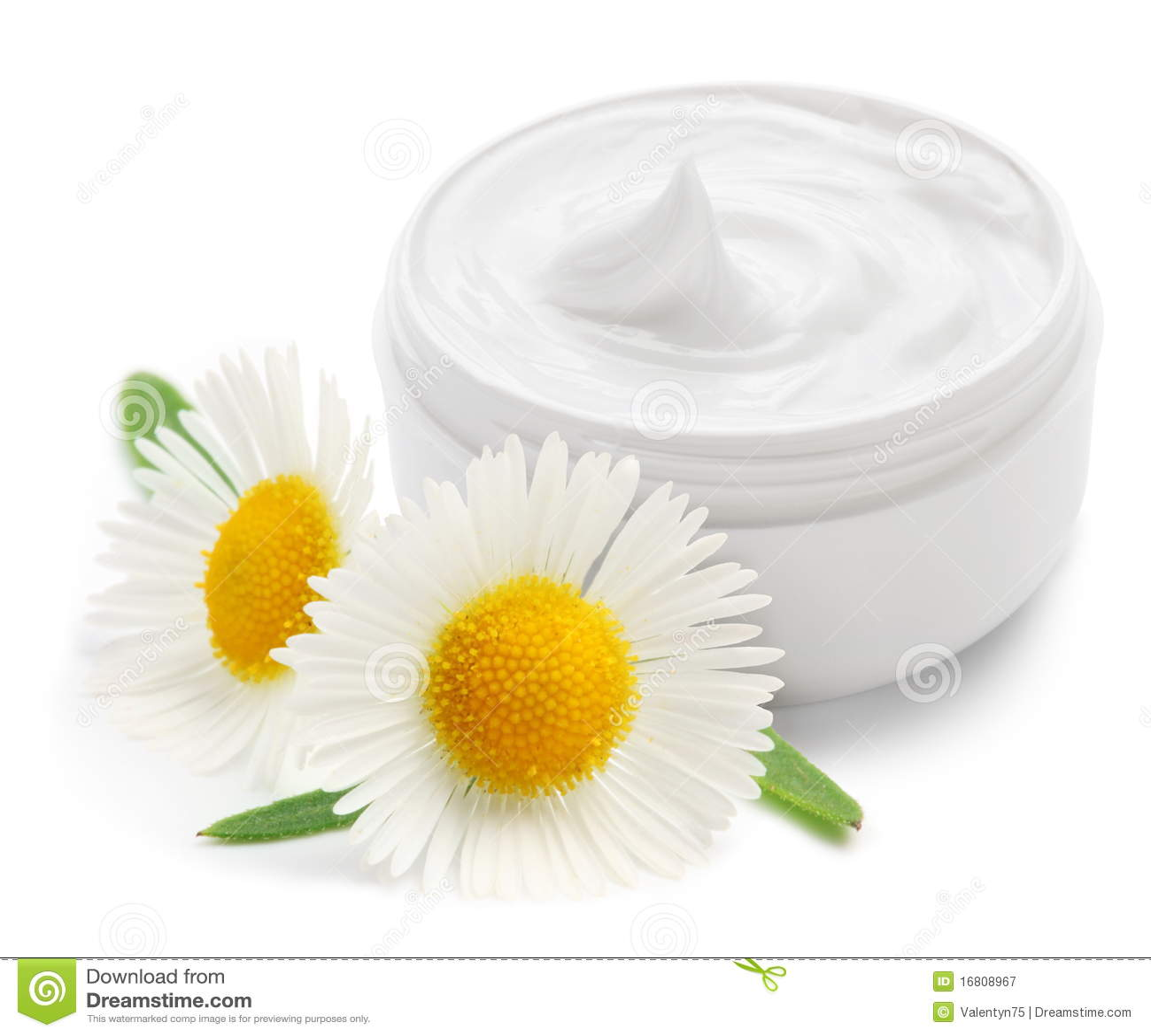 Crème de conteneur de camomiles