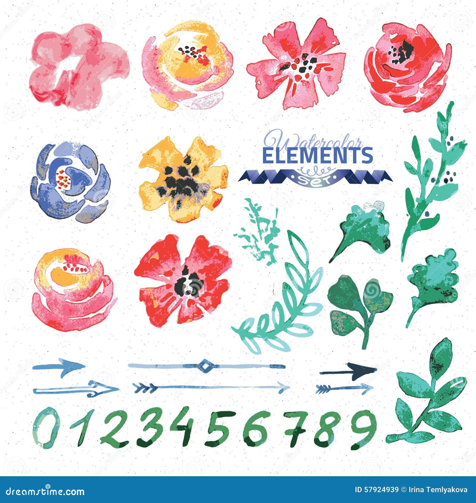 Créateur floral de guirlande d aquarelle