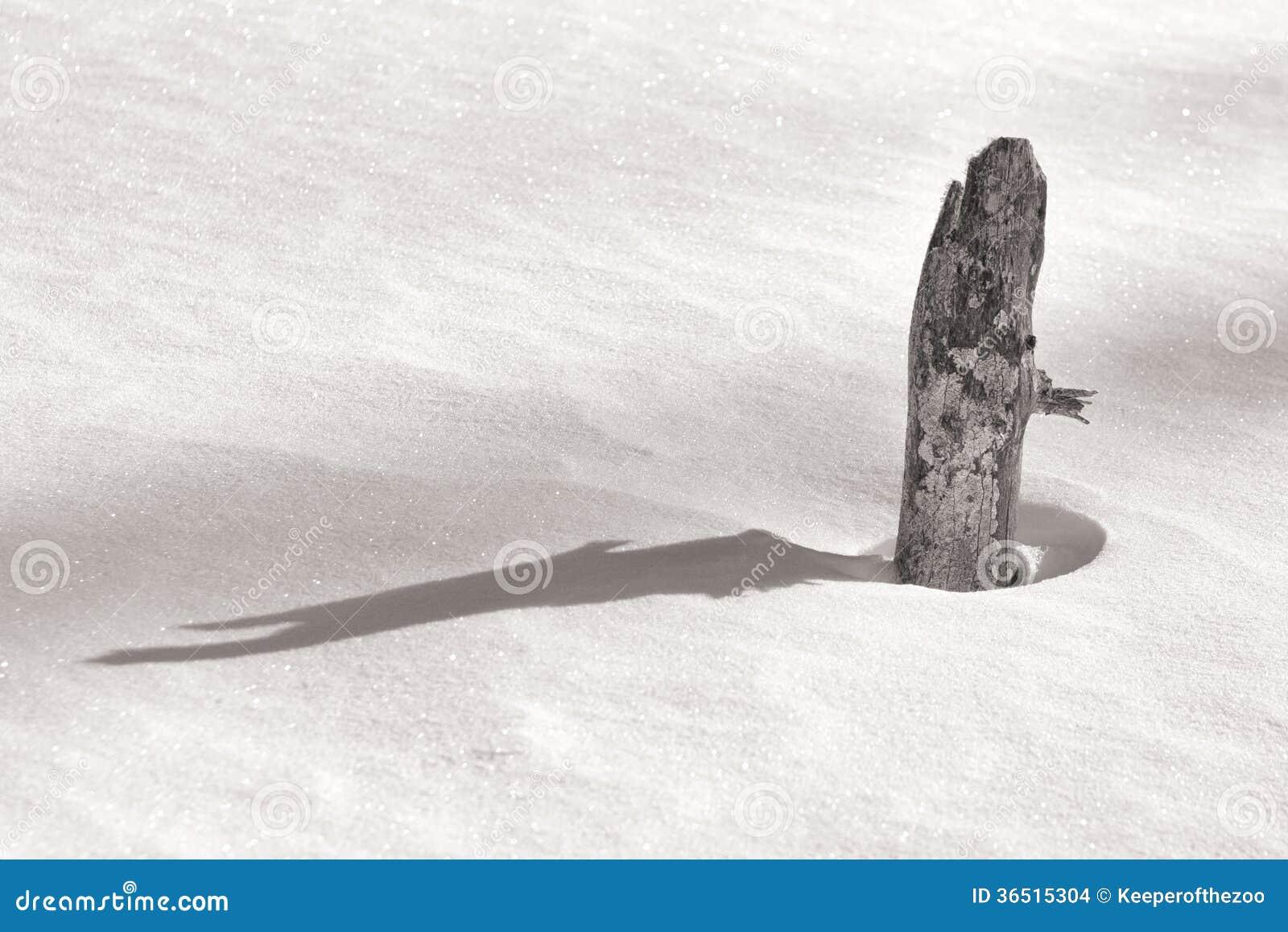 Crêtes de tronçon par la neige de scintillement