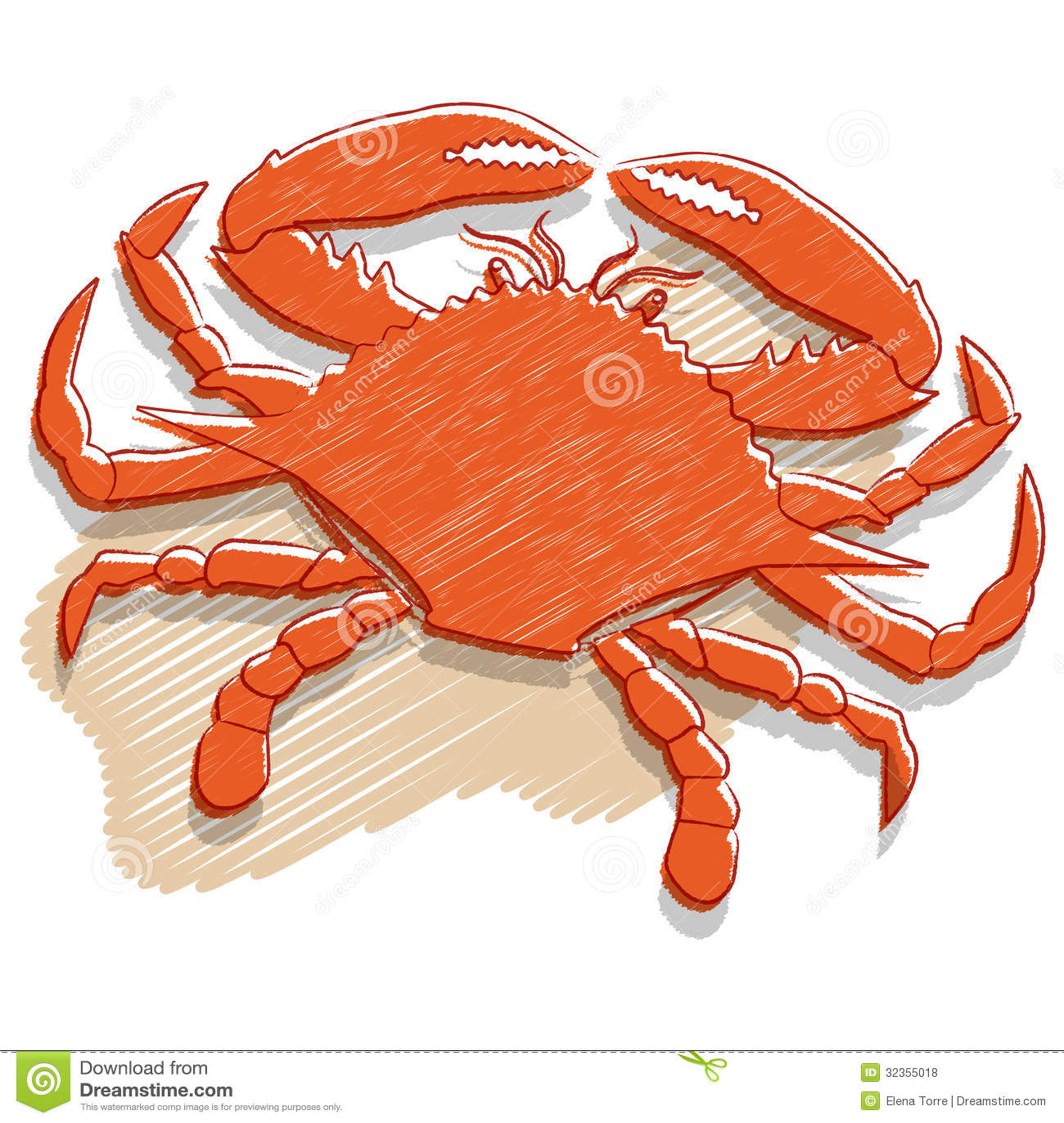 crab vector royalty free stock photos