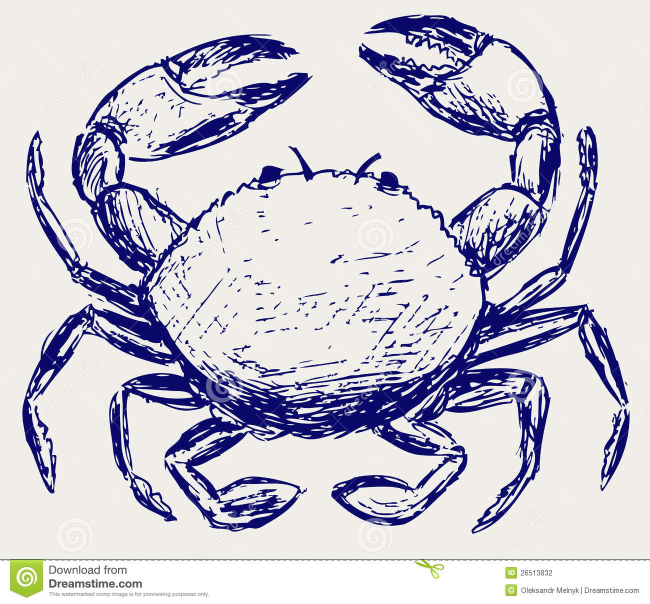 Crab Sketch Stock Photography Image 26513832