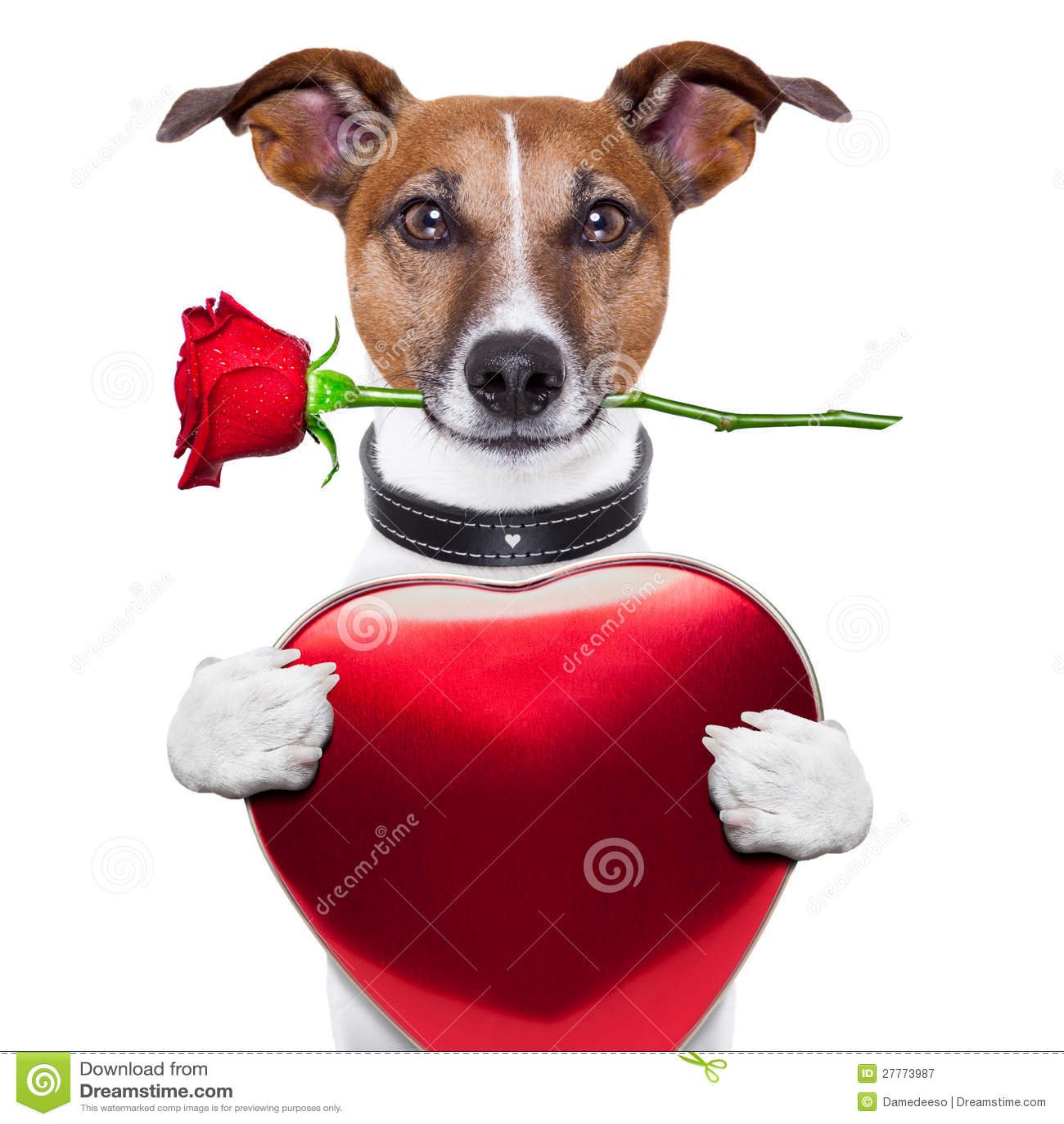 Crabot de Valentine