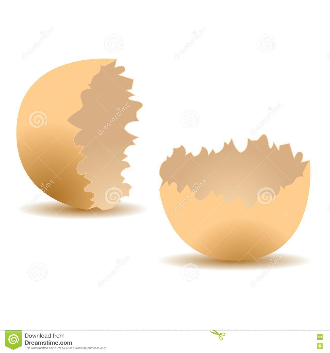 Cracked egg shell stock vector. Image of food, cracked ...