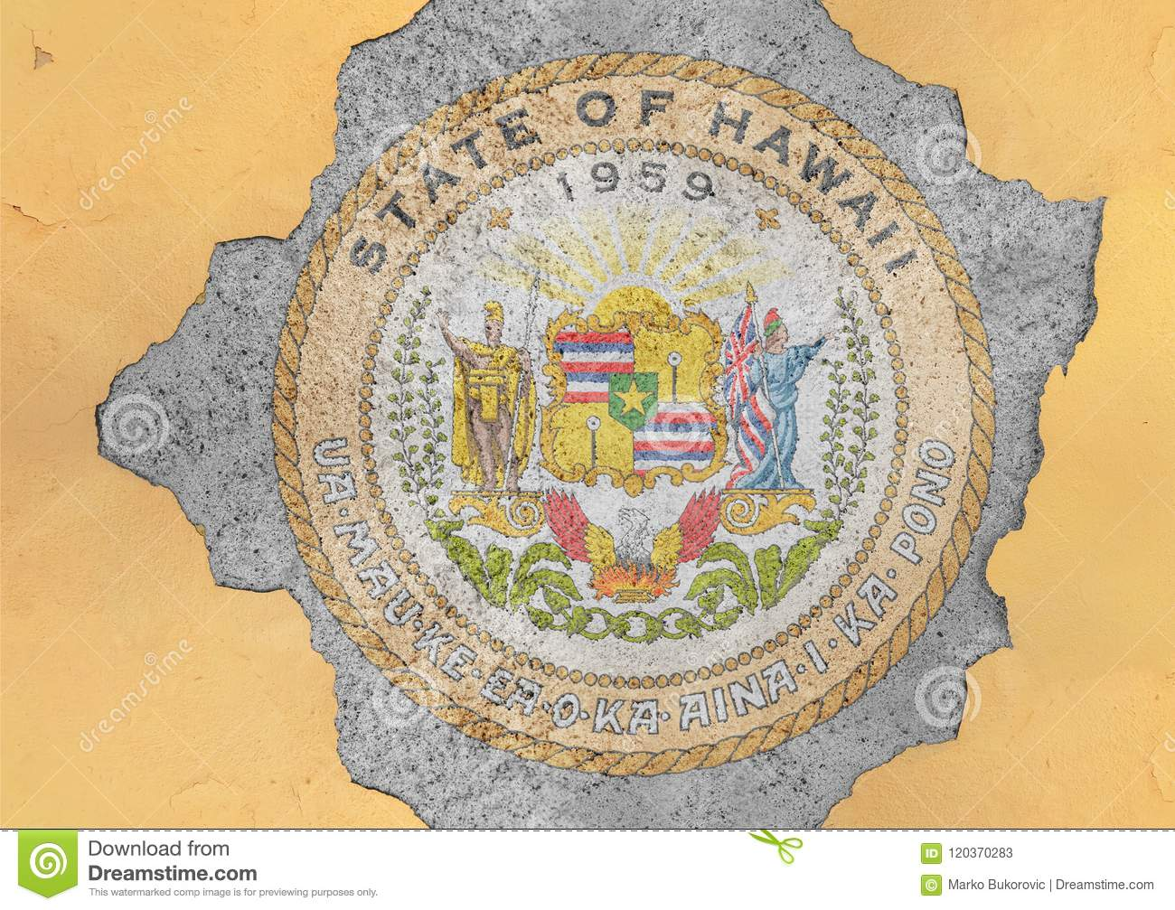 Cracked hole with US state Hawaii seal flag abstract in facade wall