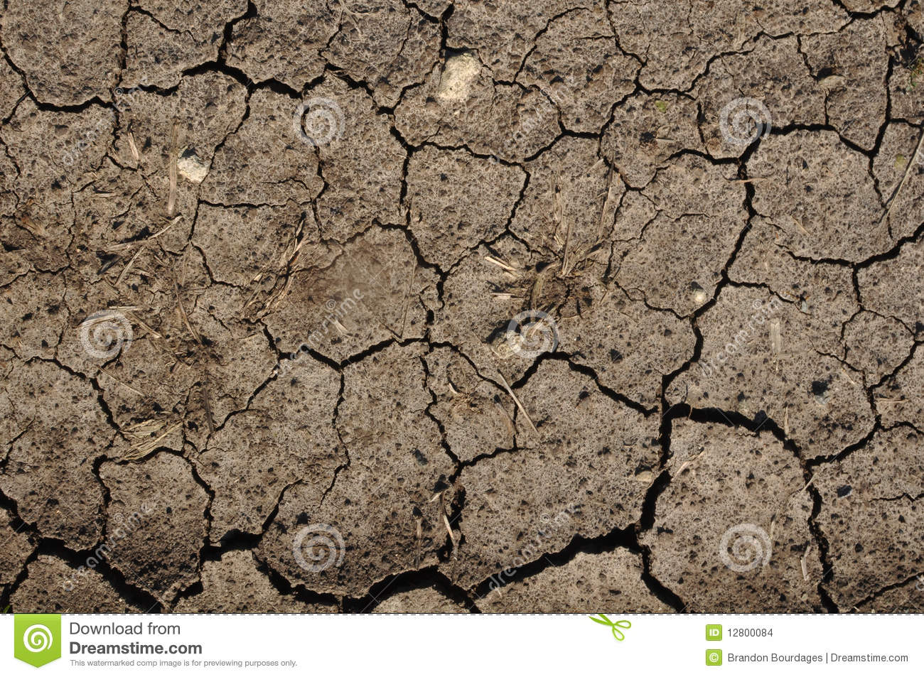 Brown Cracked Mud or Dirt used as a Background Cracked Dirt Background