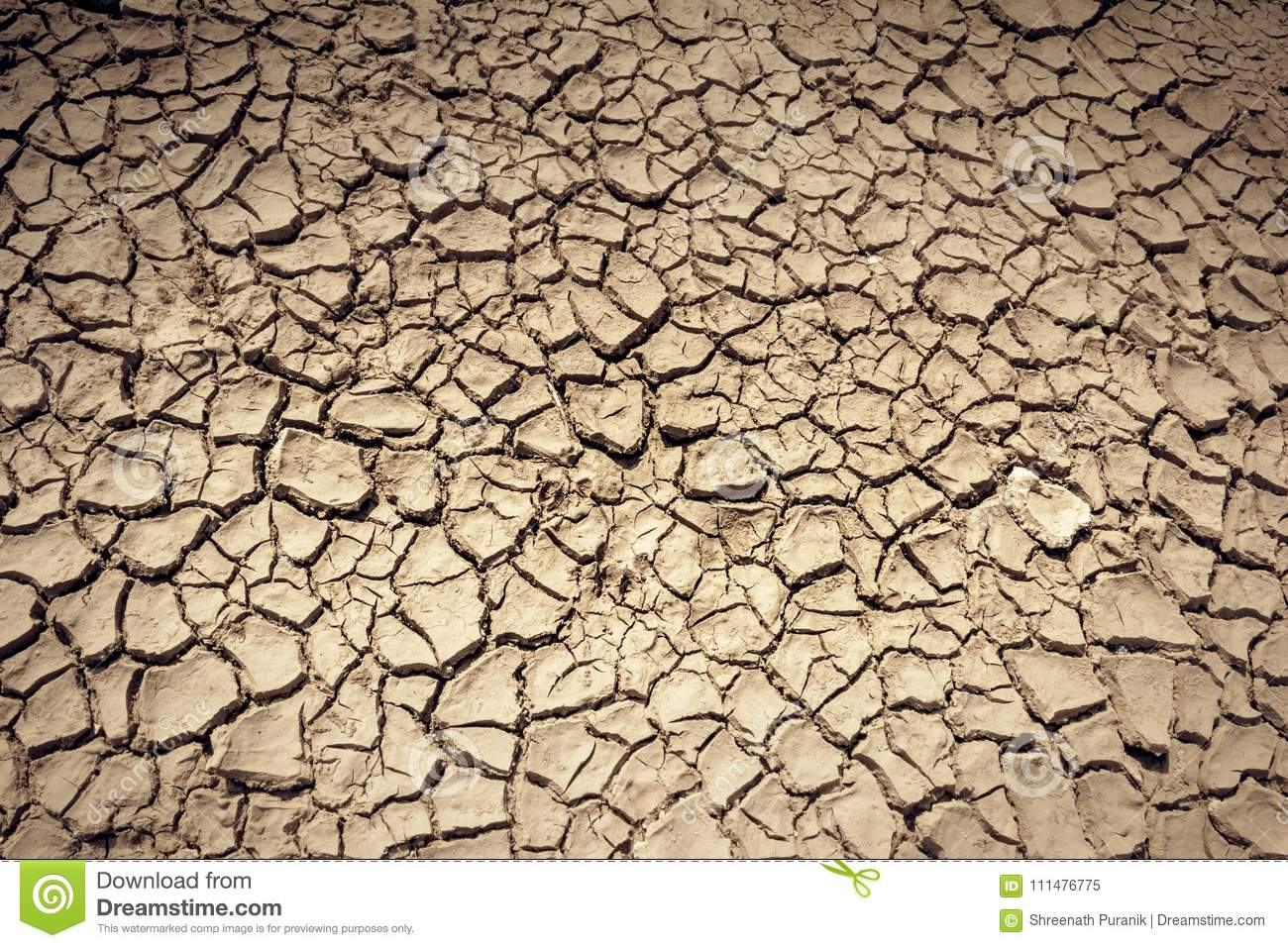 Parched earth pictures