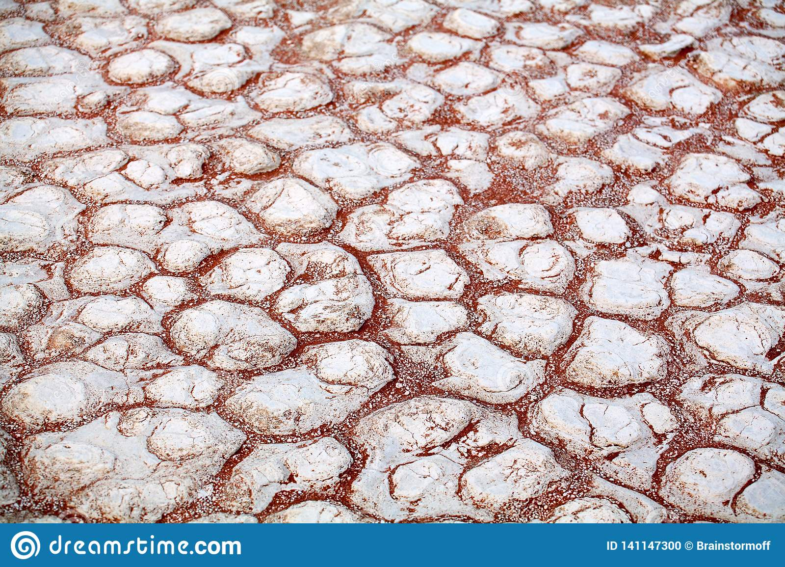 Cracked white dry clay surface on orange sand background in Etosha salt pan Namib desert top view closeup