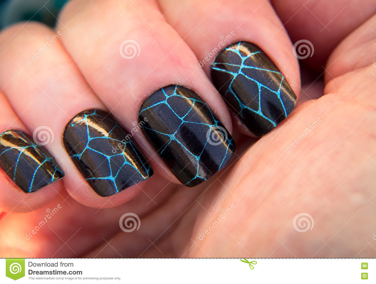 Crackle Nail Art Stock Photo Image Of Manicured Perfectly 79761332