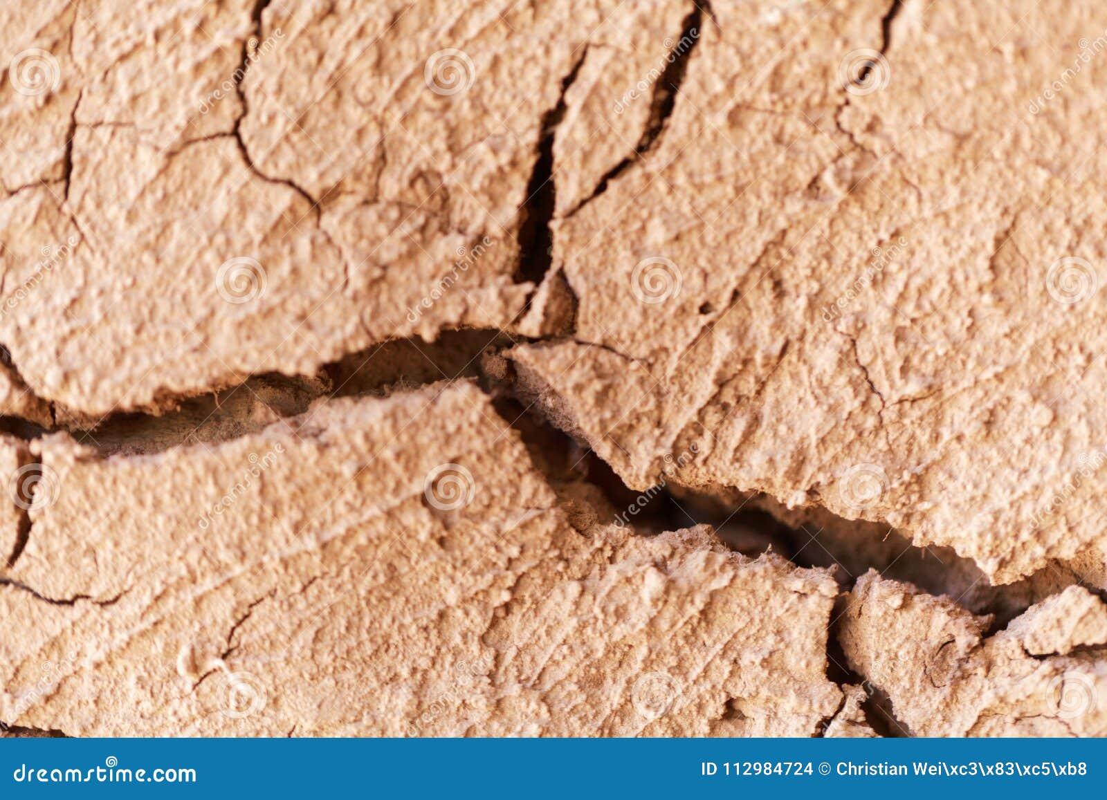 Cracks in old mud mortar.