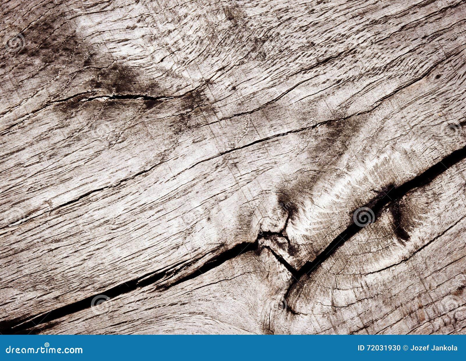 Old Oak Wood ~ Cracks on old oak wood surface royalty free stock photo