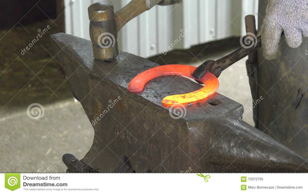 A Craftsman Farrier Replace Horseshoes Stock Video - Video of
