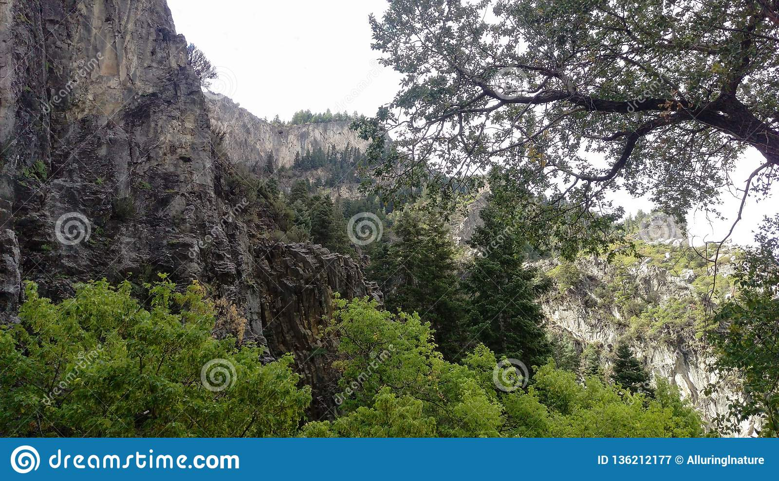 Craggy Cliff in Rock Canyon