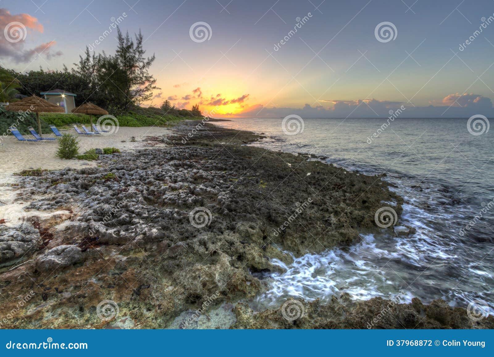 Craggy kustsolnedgång för storslagen kajman