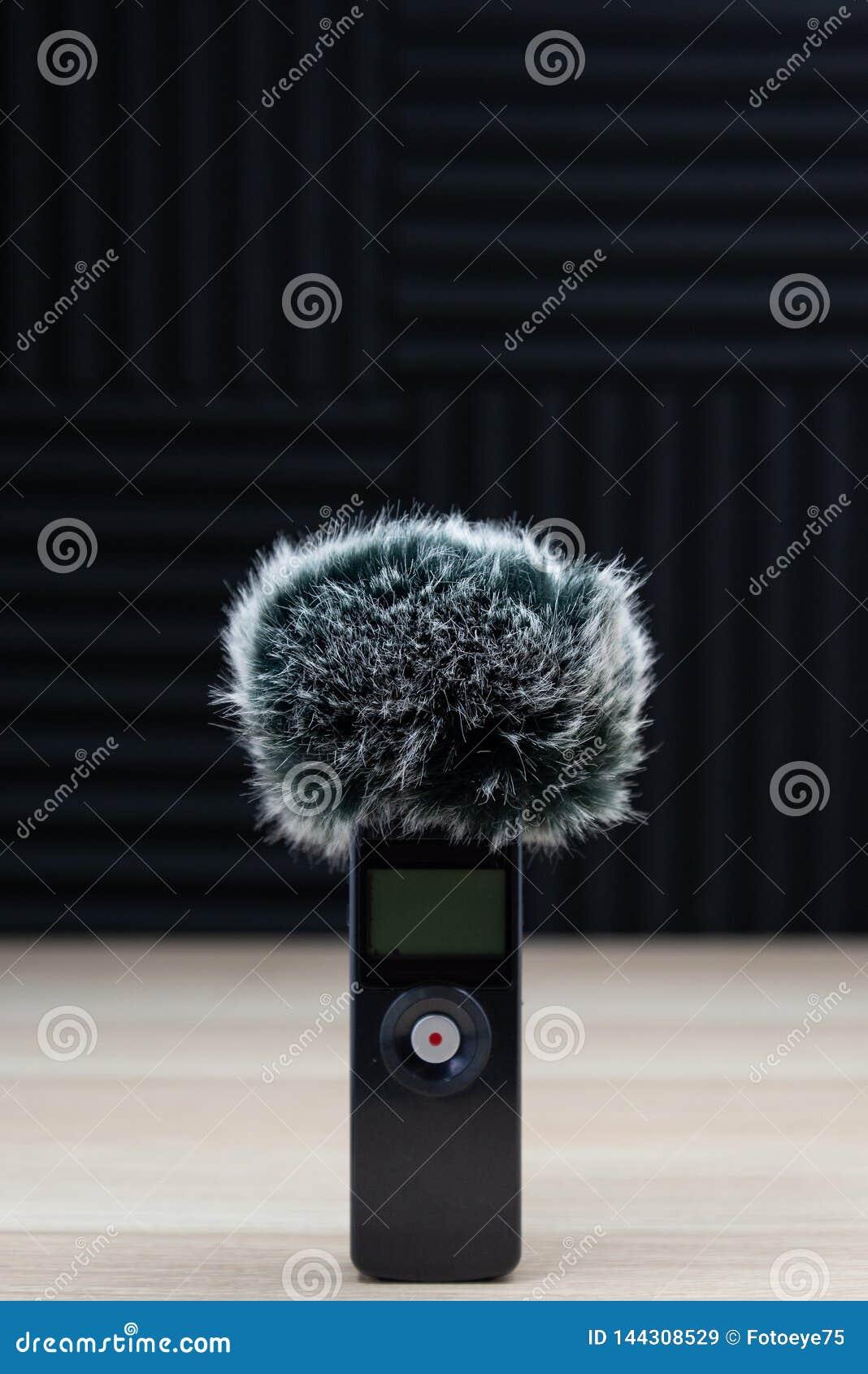 ?cran audio de vent d enregistreur de microphone tenu dans la main de bourdonnement