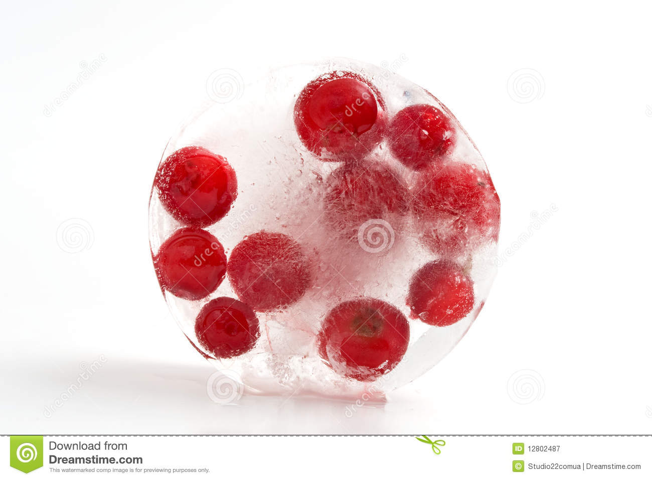 Cranberries_in_ice