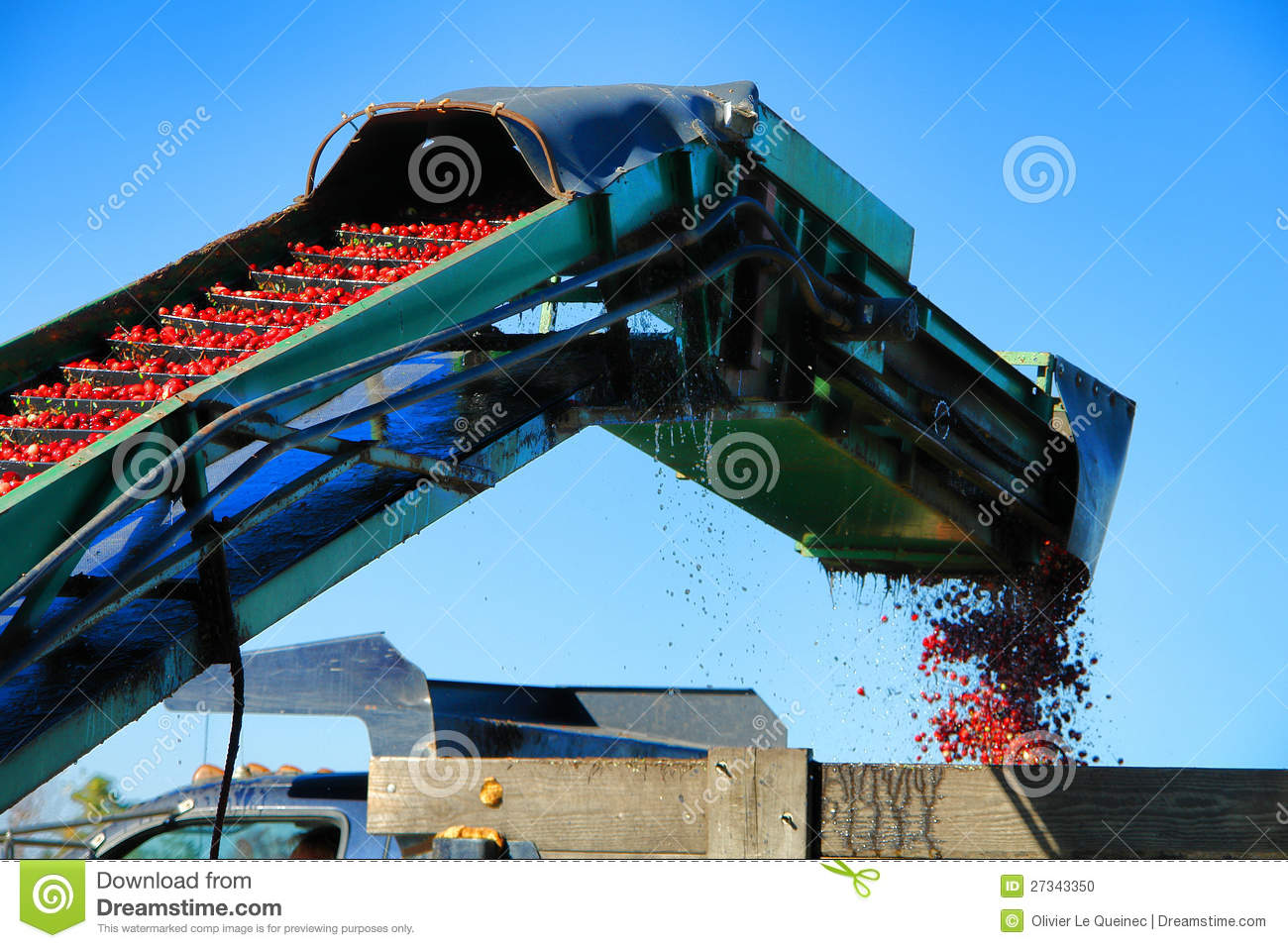 cranberry conveyor and loader agriculture machine stock Tractor Silhouette Clip Art Harvest Clip Art