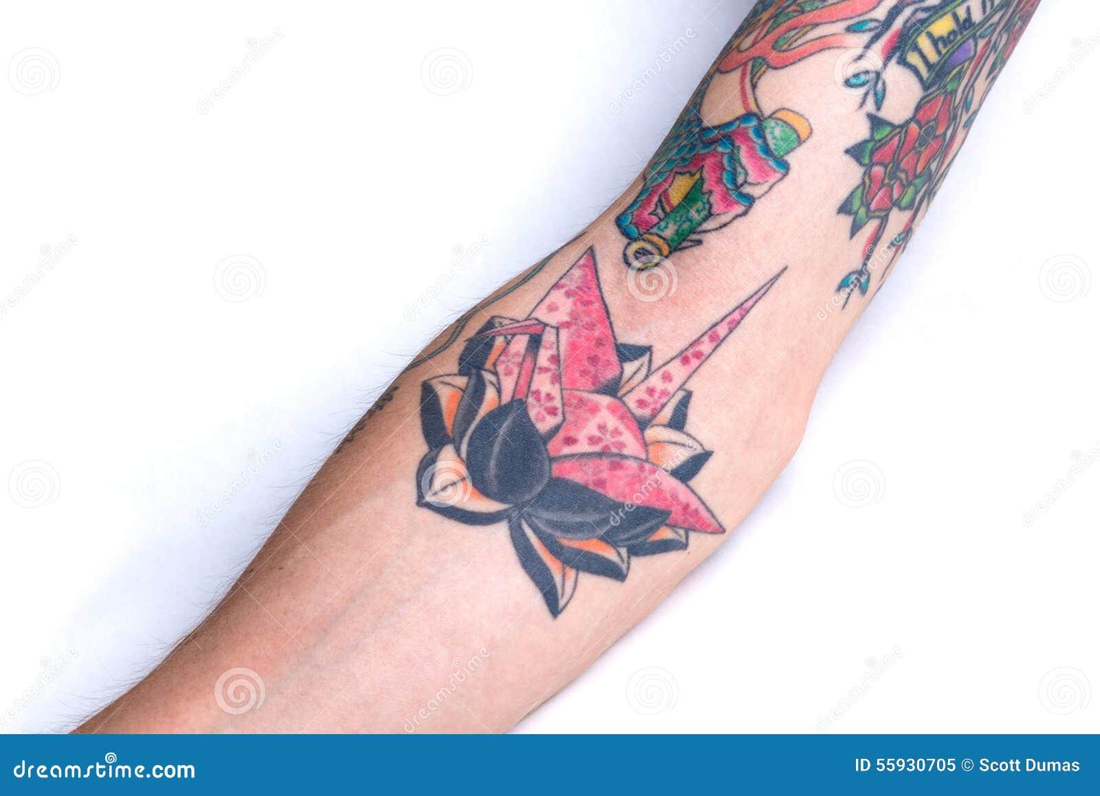 Crane Black Lotus Forearm Tattoo Rose Image Stock Image Du Bras