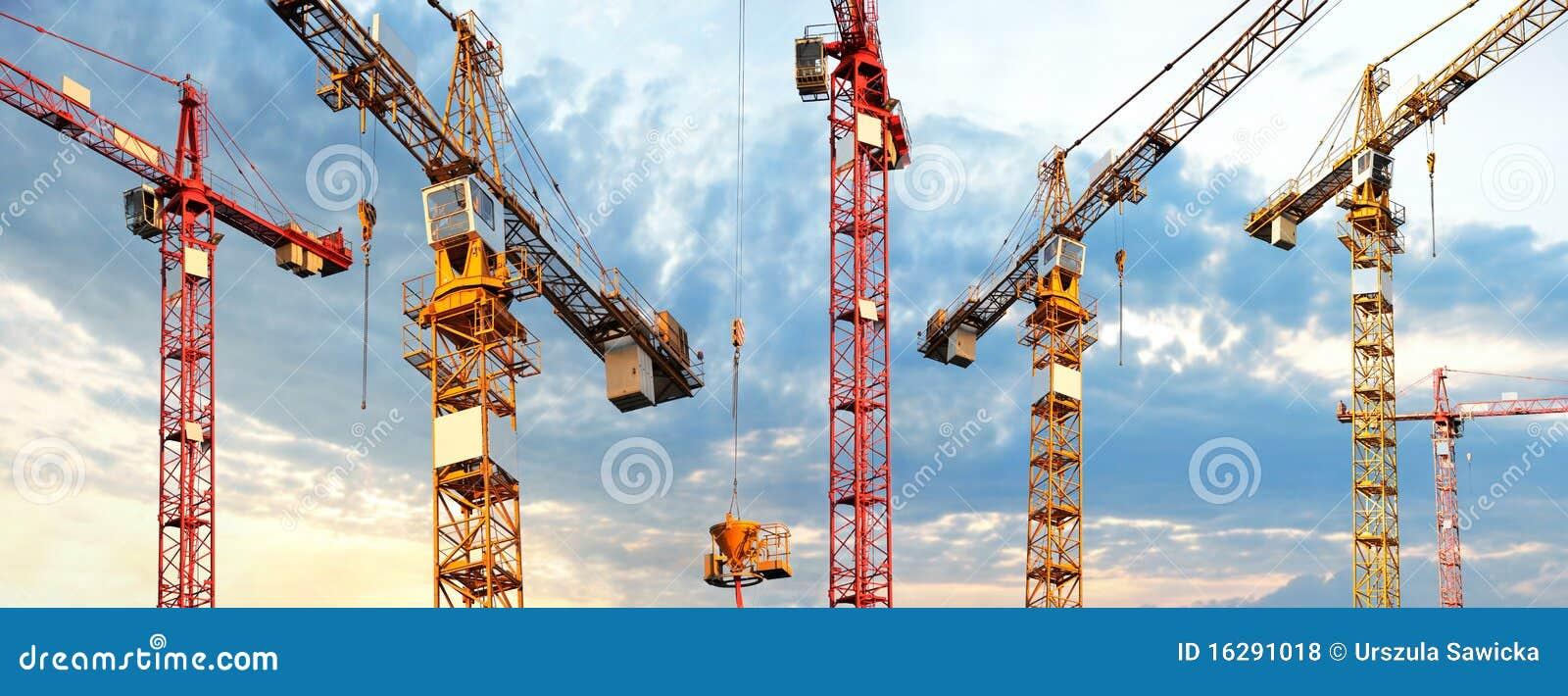 Cranes panorama