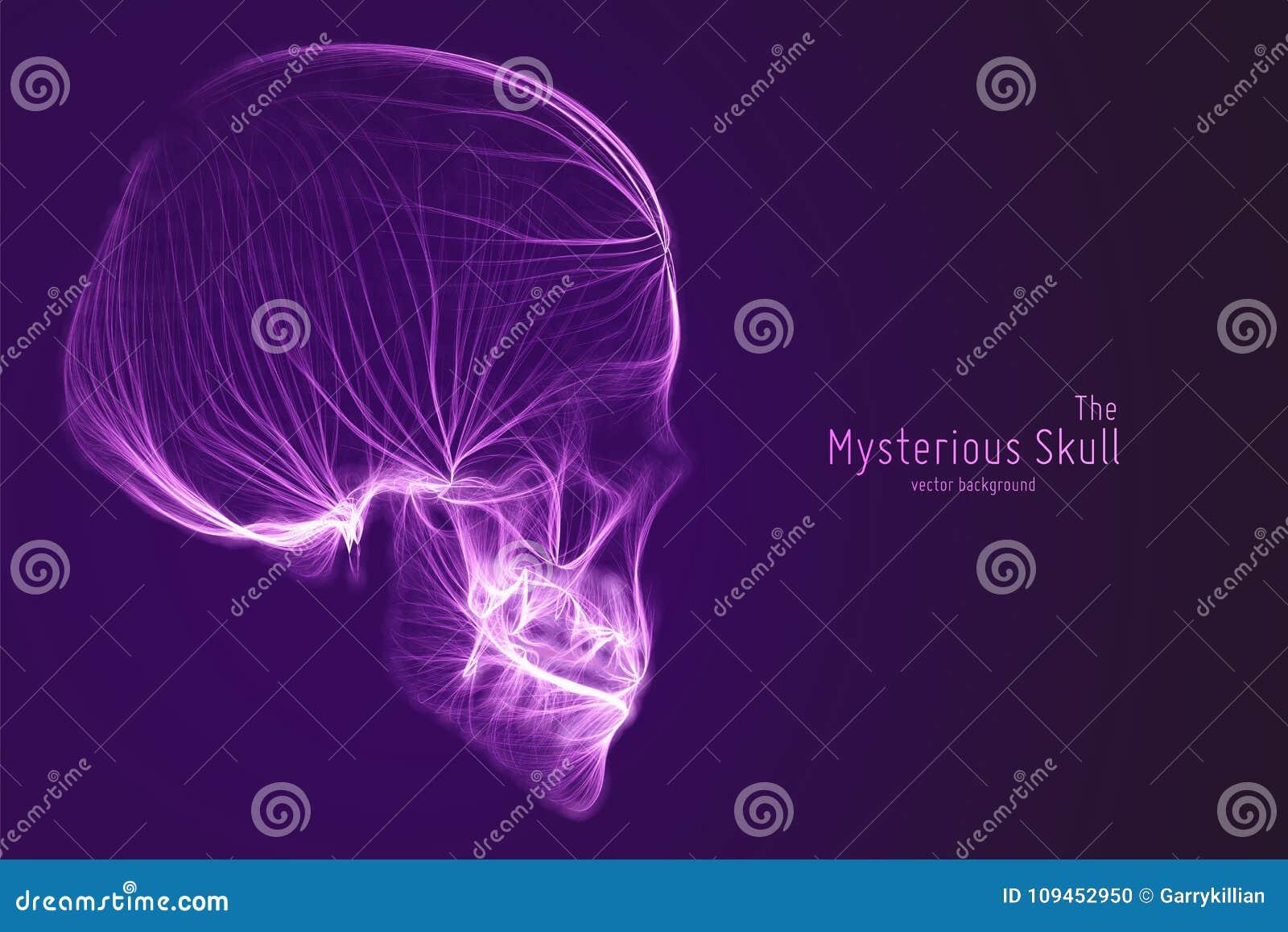 Cranio di vettore costruito con le linee viola Fonte misteriosa di fondo di vita Illustrazione di concetto di sicurezza di Intern