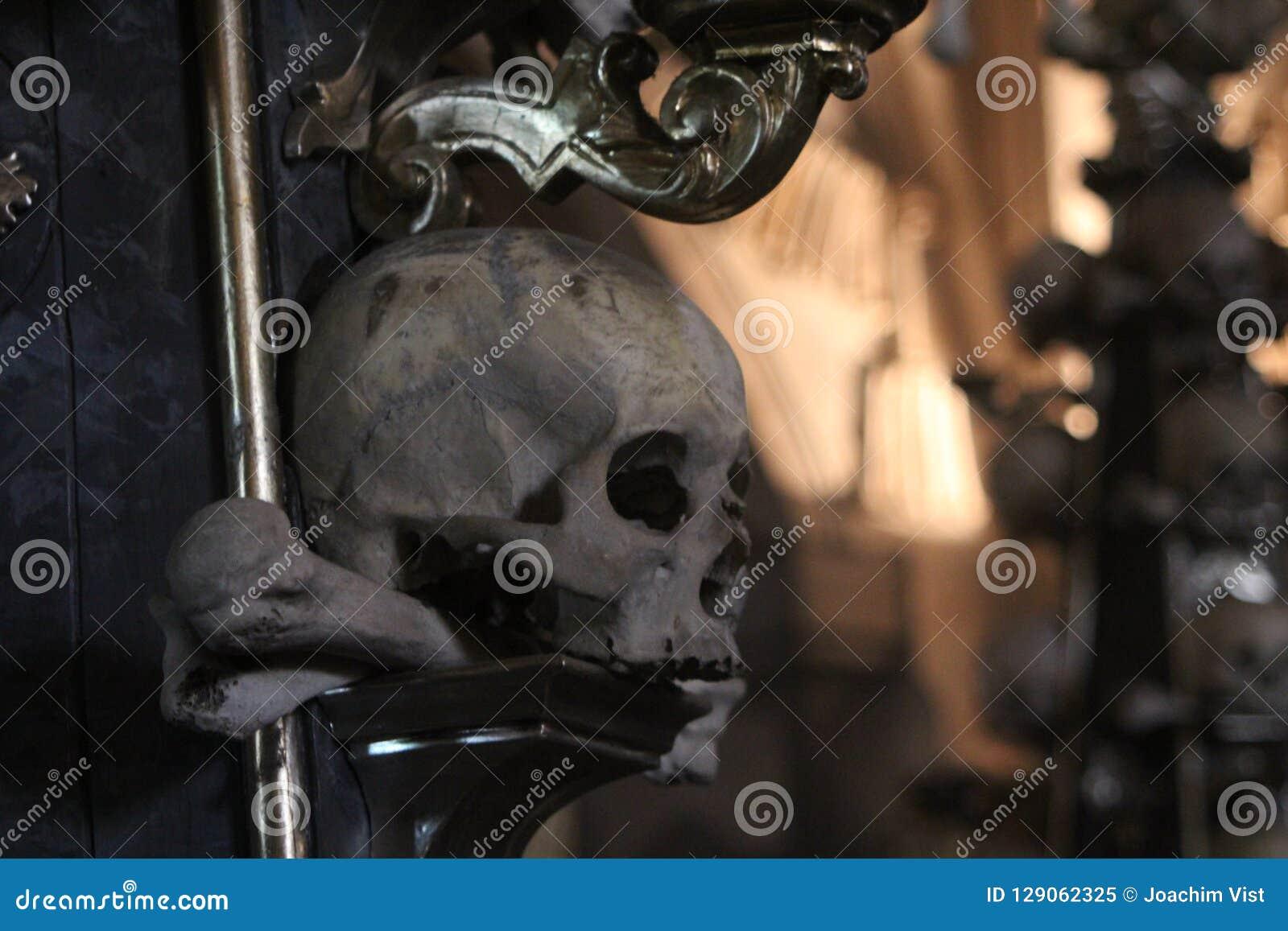 Cranio in osso Churc di Kutna Hora