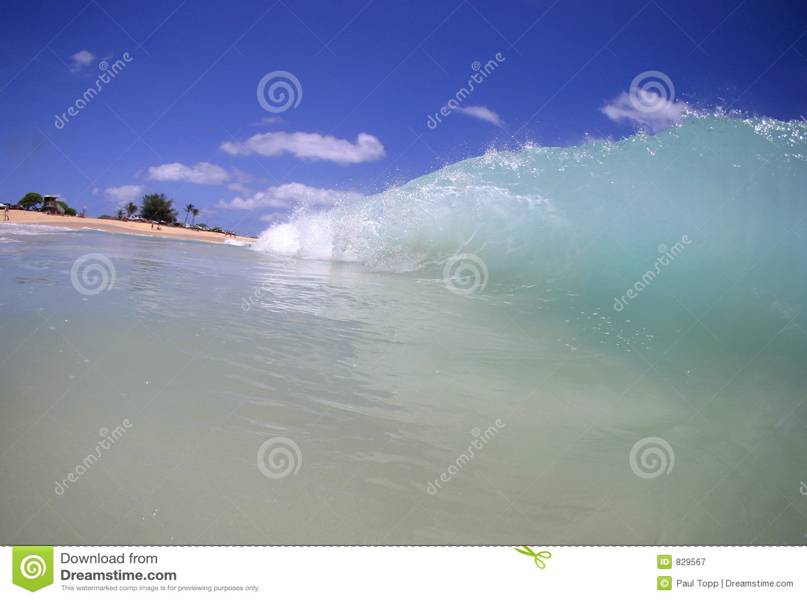 Crashing Wave on the Beach in Hawaii