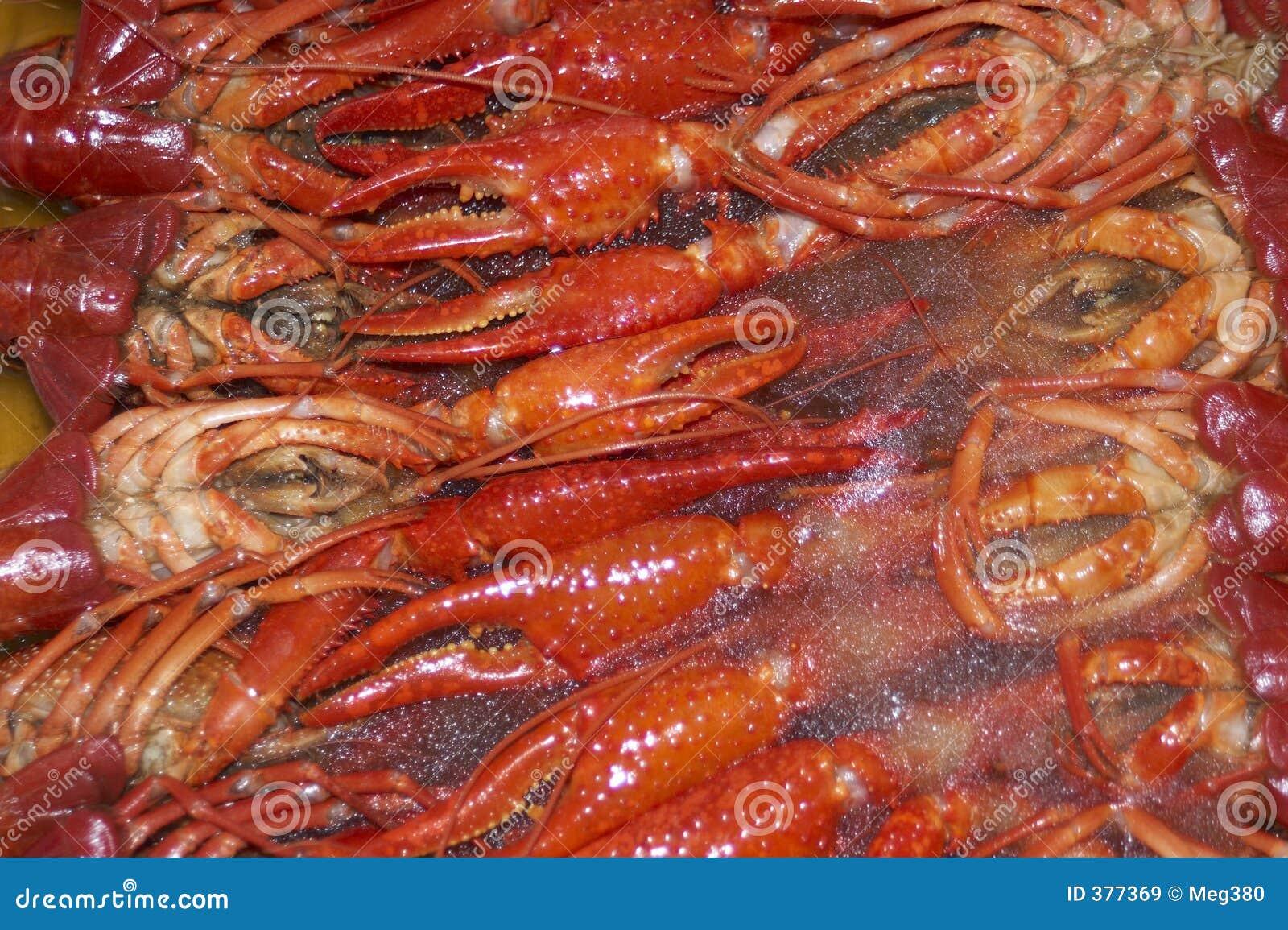 Craw ψάρια παγωμένα