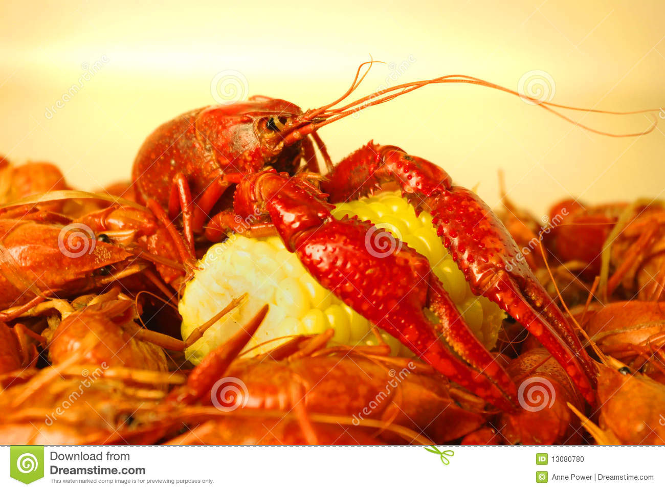 how to cook red claw yabbies