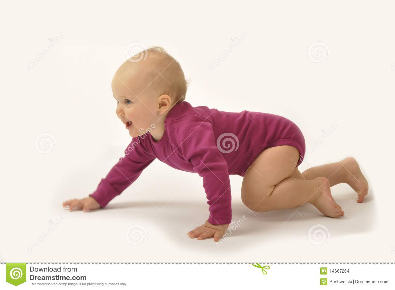 Crawling Baby Stock Images  Image: 14667264