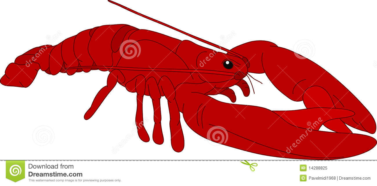 Crayfish Stock Illustrations – 1,801 Crayfish Stock Illustrations ...