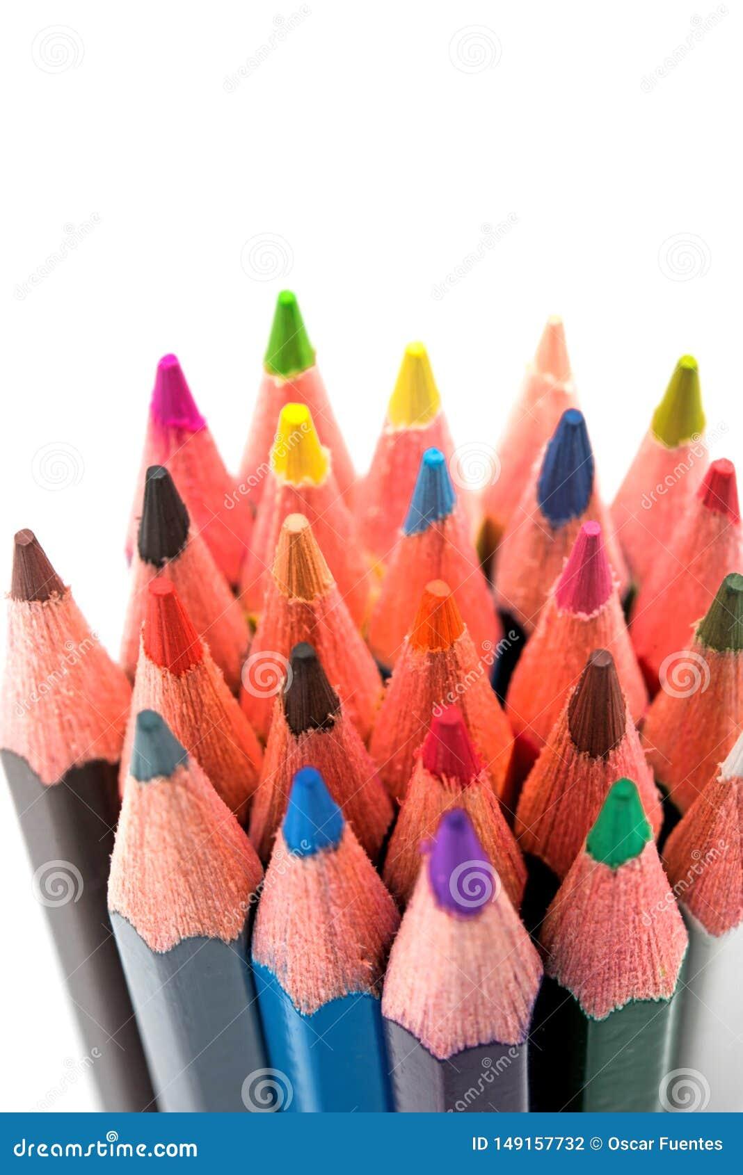 Crayons color?s sur le fond blanc