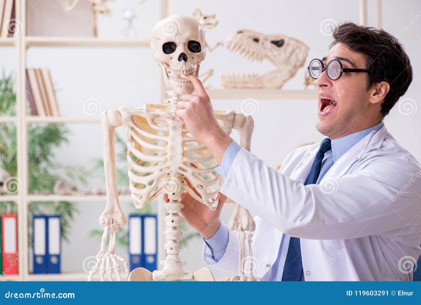 The crazy professor studying human skeleton