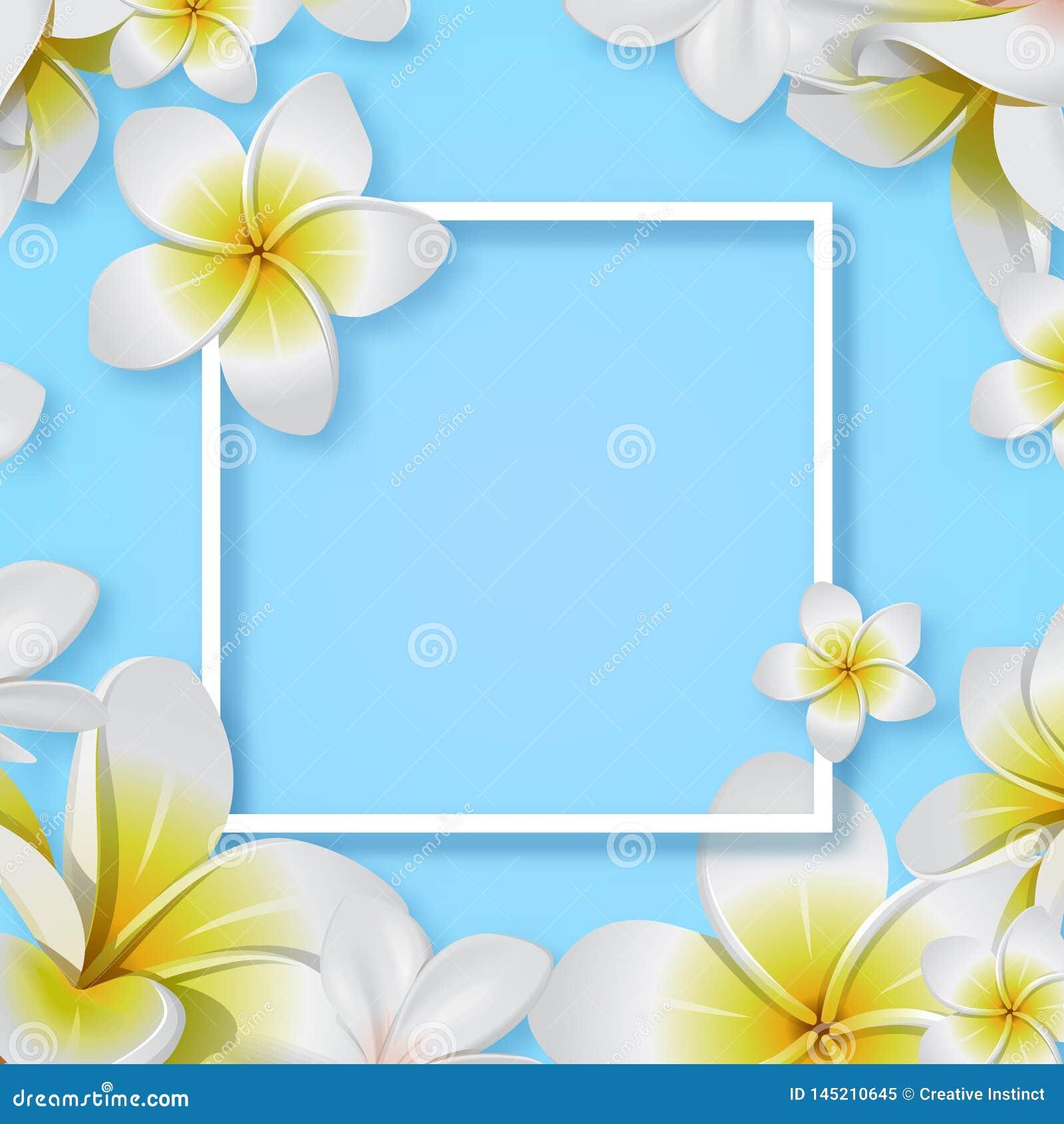 Creatieve tropische bloem met kader vectoreps 10