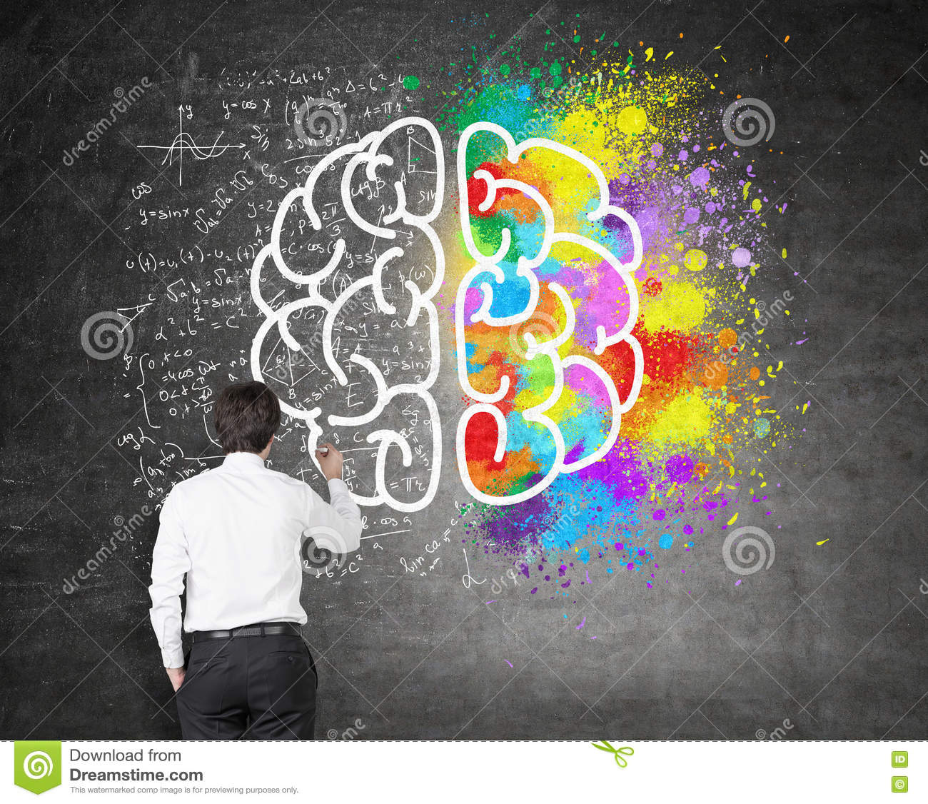 brain hemispheres sketch stock photos images pictures 79 images creative and analytical thinking royalty stock images