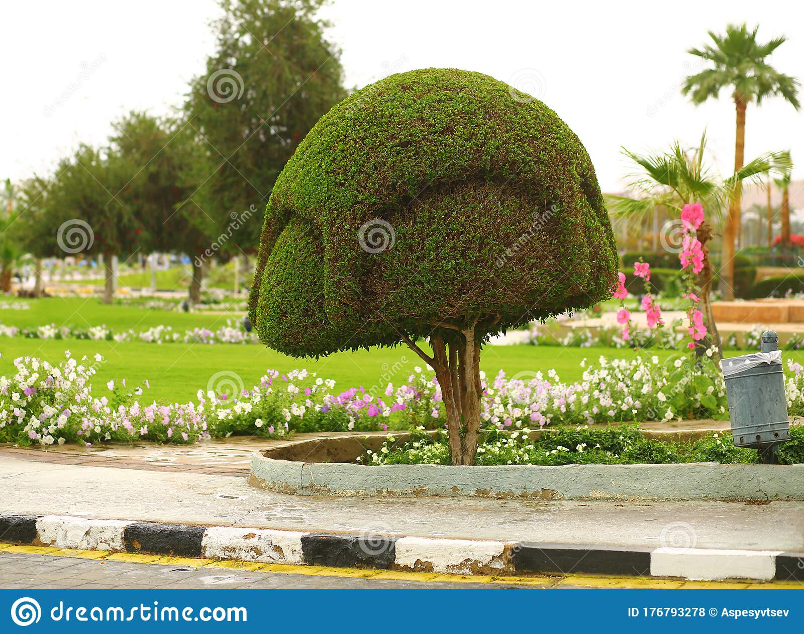 Creative Art Shape Topiary Tree Gardening Landscape Design Stock Photo Image Of Leaf Circle 176793278