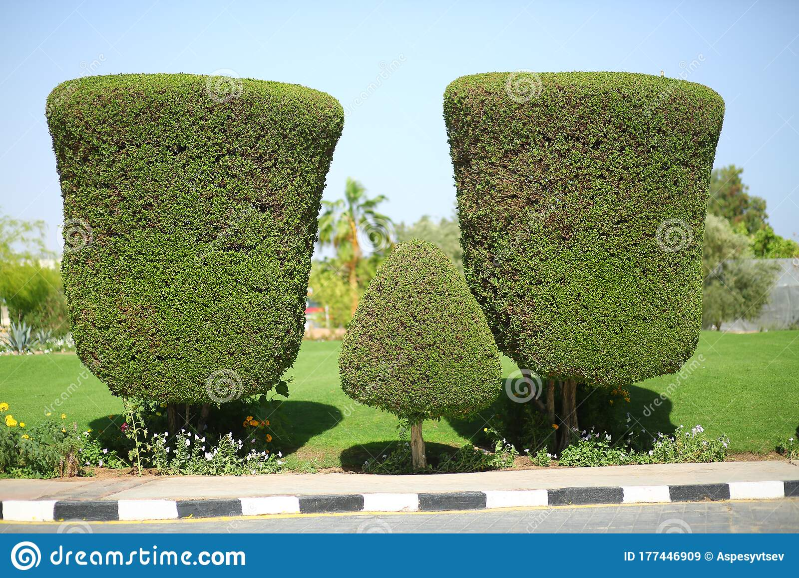 Creative Artistic Shape Topiary Tree Gardening Landscape Design Stock Image Image Of Decoration Hedge 177446909
