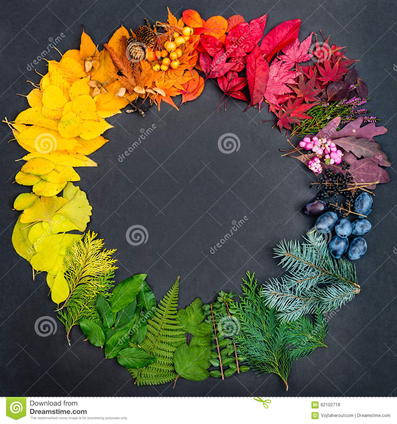 essay on colours of nature