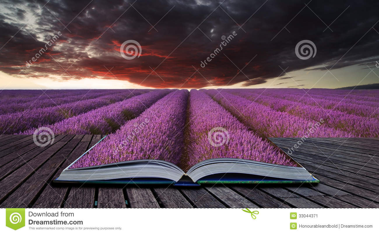 Creative concept pages of book Stunning lavender field landscape
