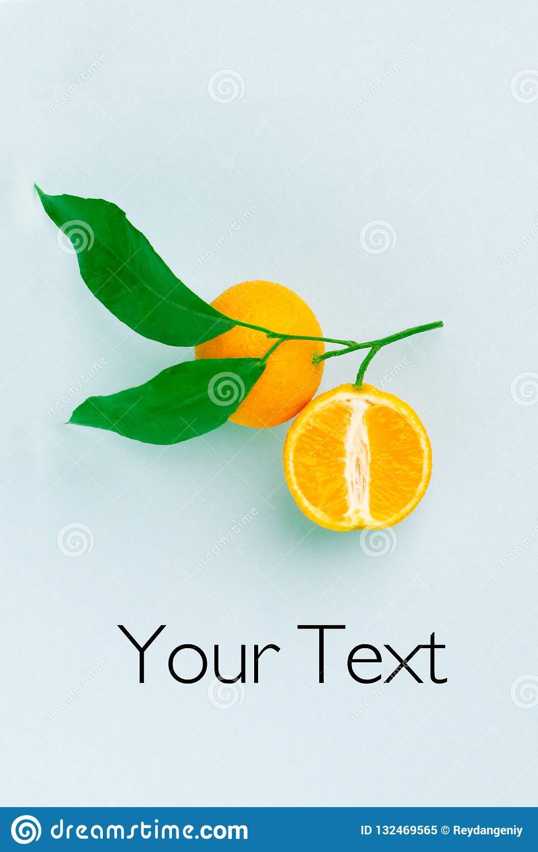 Creative fruit layout: orange branch with yellow oranges