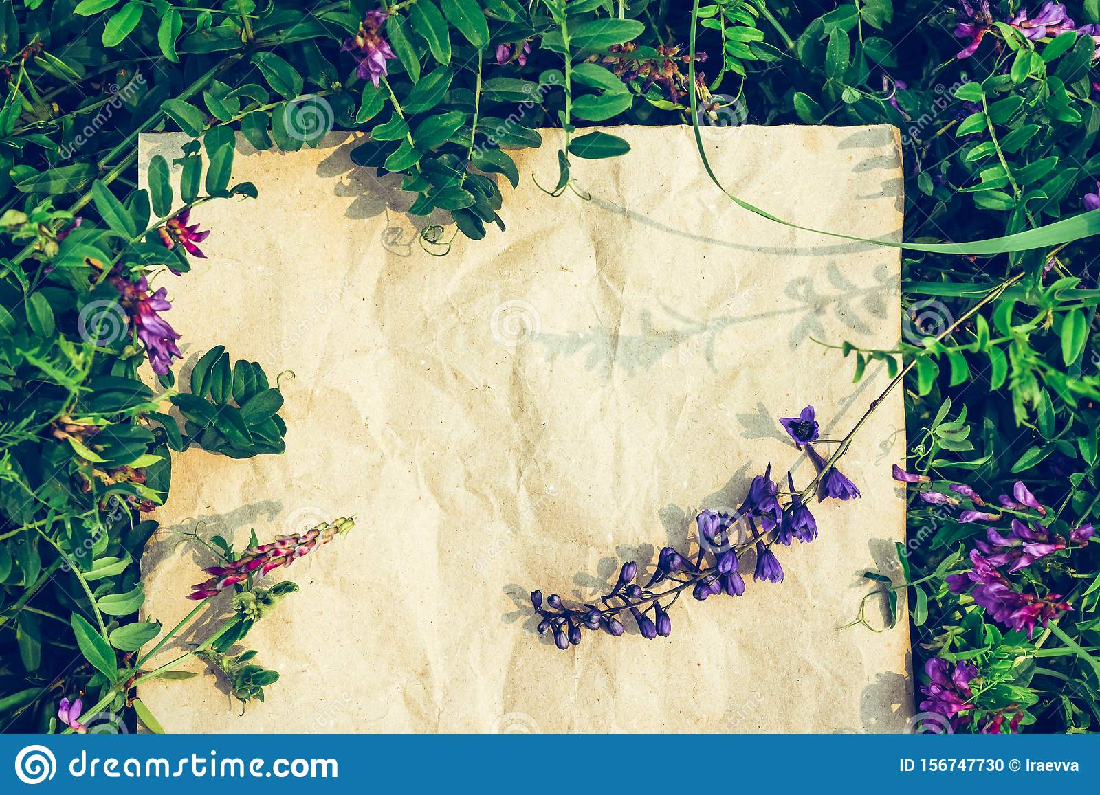 Creative green floral background from natural plants. Kraft paper frame