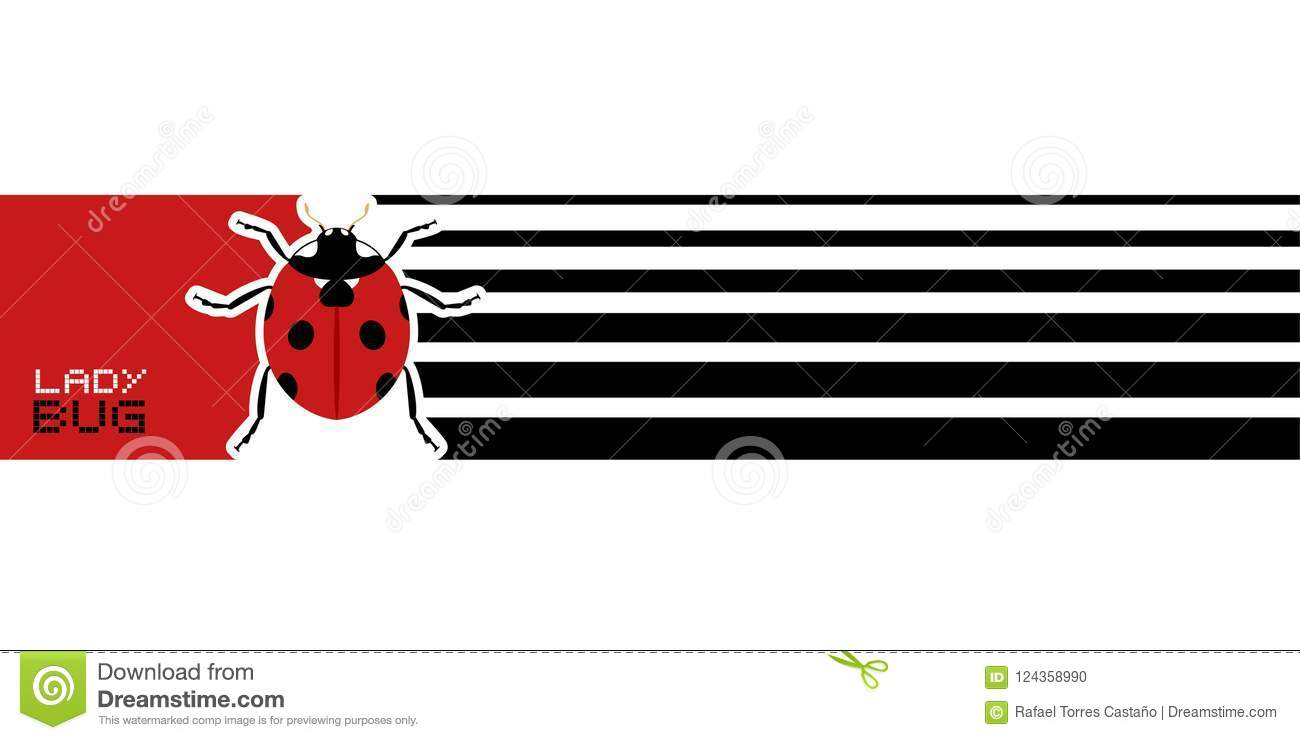 creative ladybug banner stock vector illustration of ladybug