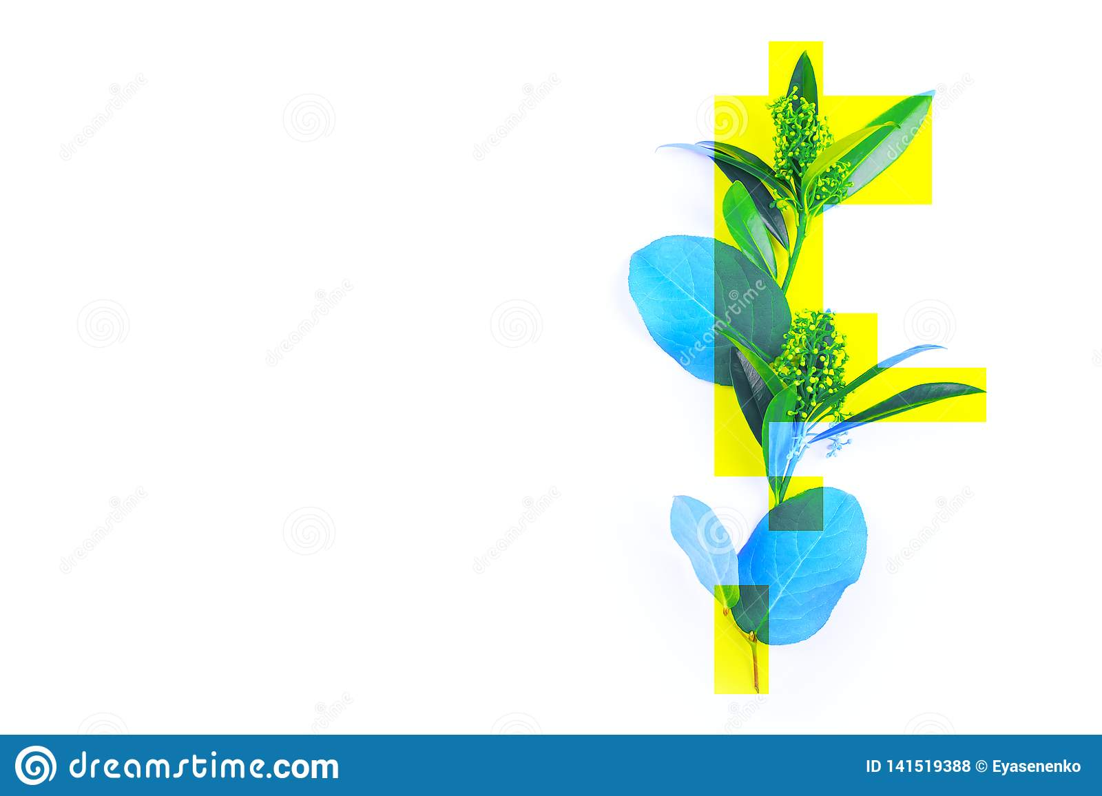 Creative photo of a plant, green leaves dyed blue with yellow rectangles, abstraction, not a standard image.